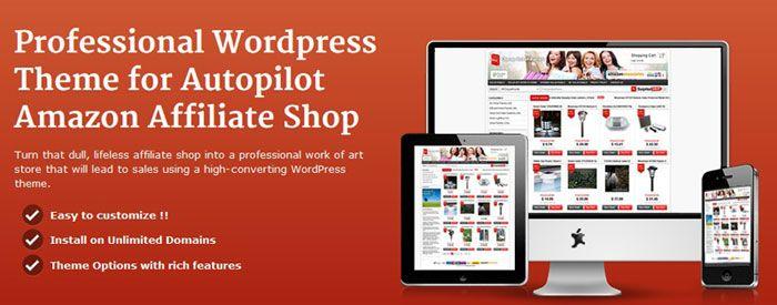 wordpress affiliate store amazon wordpress theme