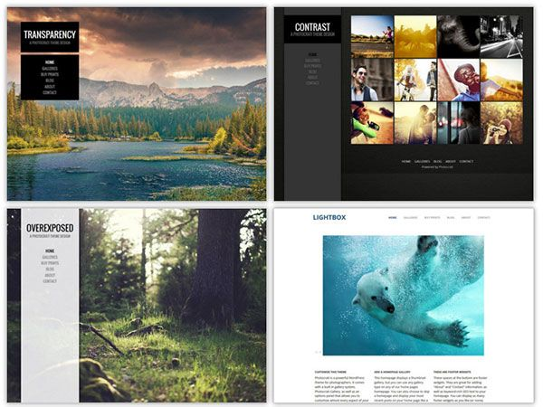 Which Is Best Wordpress Photography Theme Photocrati Vs Sell Photos