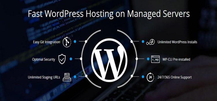 Managed Cloud Hosting For Your WordPress Website