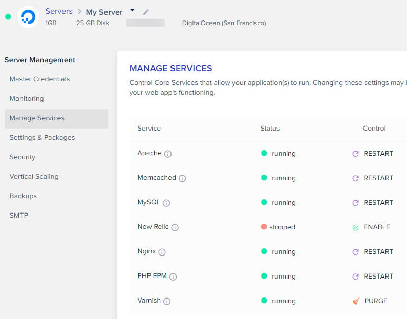 Cloudways manage services options.