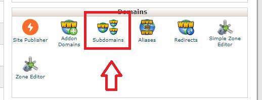how install wordpress subdomain