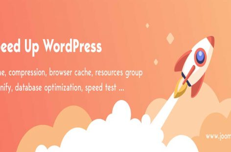 WordPress Performance Plugin – WP Speed of Light Review | Free vs Pro