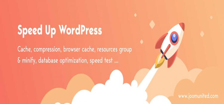 WordPress Performance Plugin WP Speed of Light Review