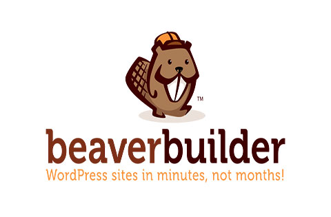beaver builder vs elementor vs divi builder