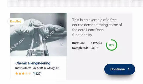 Course Description cards on eLumine Theme