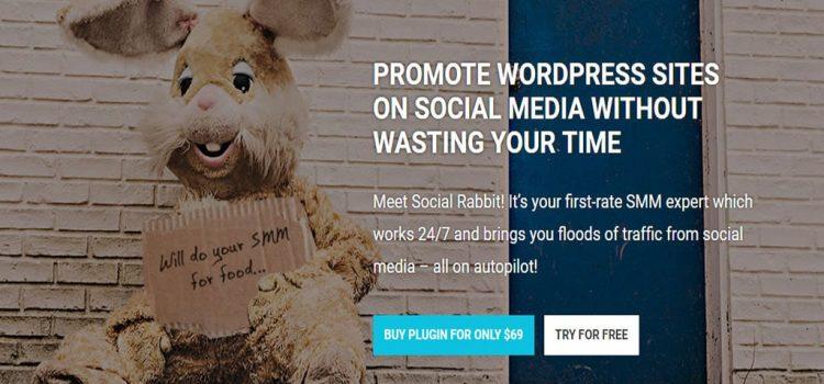 social rabbit review