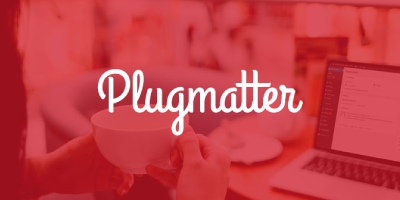 Plugmatter WordPress Support Service discount