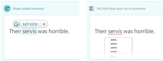 ginger vs ms word