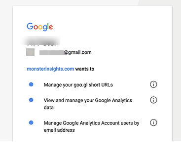 monsterinsights access to google analytics