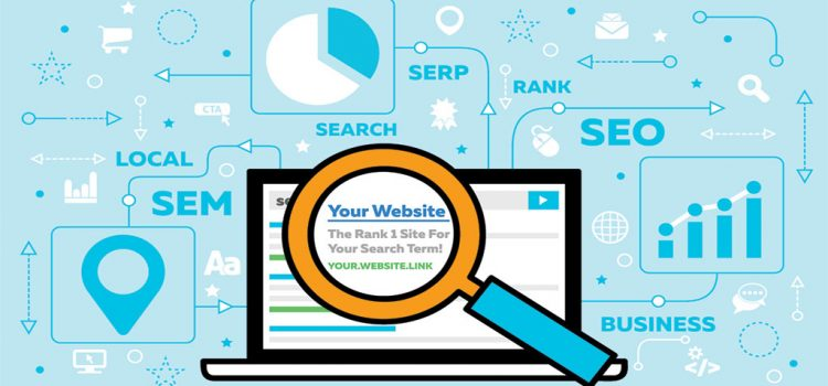 see what keywords are driving traffic to site