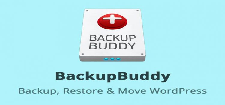 BackupBuddy Review