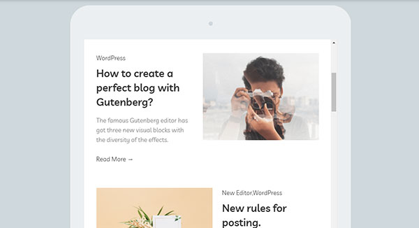 gutenberg compatible themes
