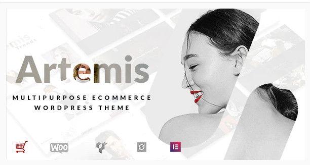 Artemis eCommerce theme.