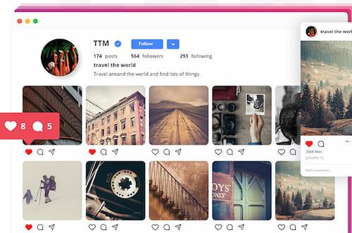 10Web social feed plugin.