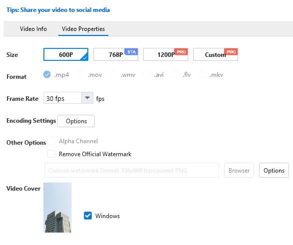 Mango Animate publish video parameters.