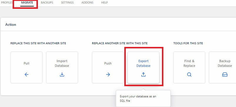 WP Migrate DB how to export database?