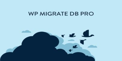 WP Migrate DB Pro review pros and cons.