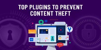 Prevent content theft in WordPress.